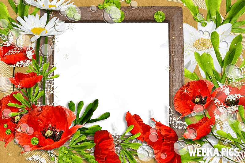 Flower photo frame picture